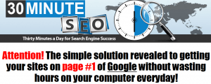 30 minute seo review