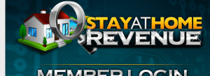 stay at home revenue review