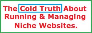 multiplenichewebsites