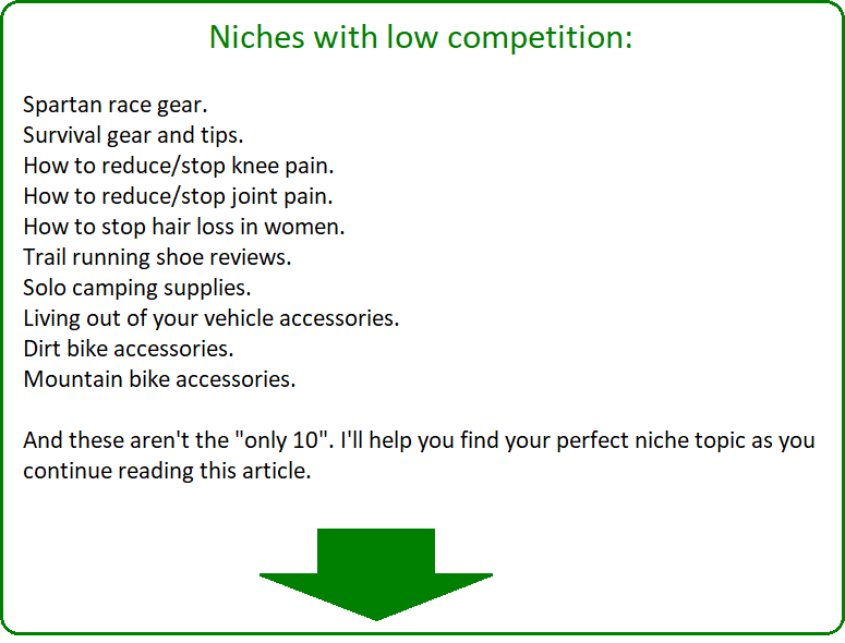 10 niches with low competition