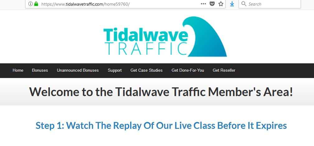 Tidal Wave Traffic Review  The Secret Traffic Source Revealed  - How