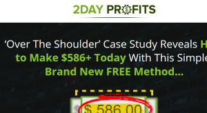 2 day profits review