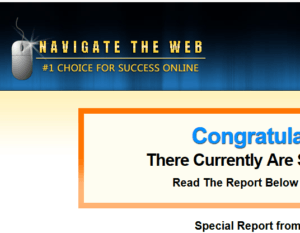 navigate the web review