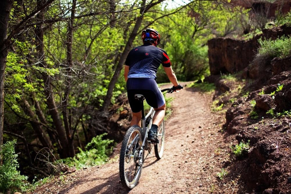 mountain bike niche