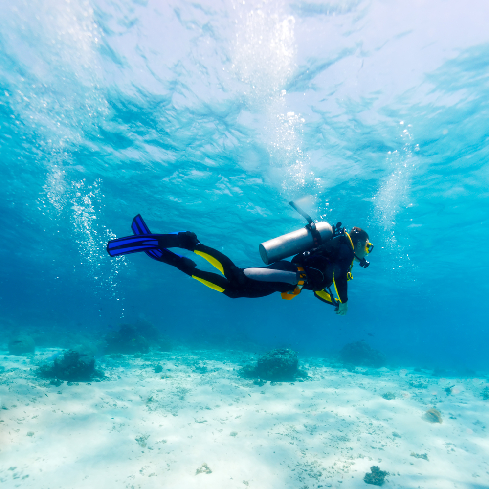 scuba diving topic