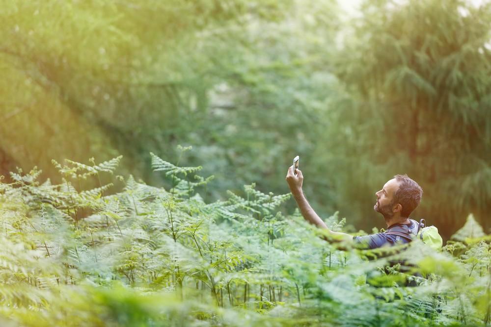 surviving in wilderness photo